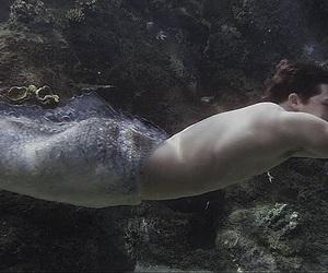 man, mermaid, and mermaids image