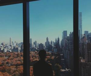 connor franta, new york, and photography image