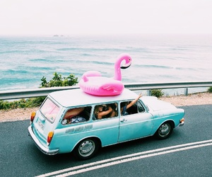 summer, car, and flamingo image