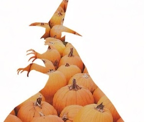 autumn, witch, and ฅʕ•ﻌ•ʔฅ image