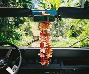 flowers, car, and hawaii image