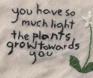 quotes, plants, and light image