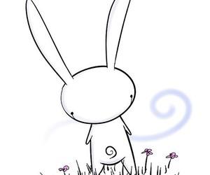 bunny, white, and rabbit image
