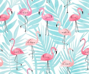 blue, flamingo, and wallpaper image