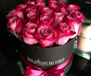 gift, pink, and rose image