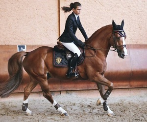 horse, charlotte casiraghi, and luxury image