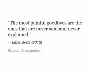goodbye, painful, and quotes image