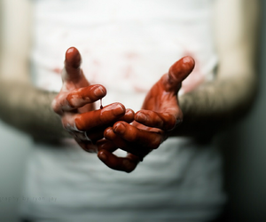 blood, photo, and hands image
