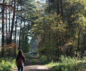 berlin, forest, and girl image