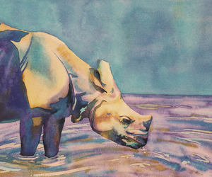 animal art, rhinoceros, and watercolor painting image