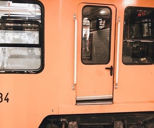 feed, orange, and train image