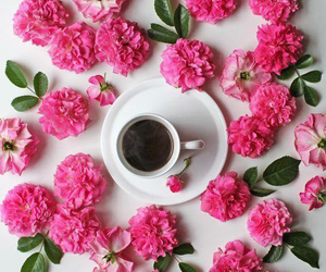 flowers and cute image