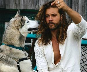 beard, dog, and pet image
