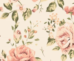 rose, floral, and flowers image