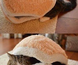 マカロン 猫ベッド image