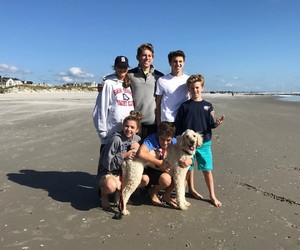 beach, family, and dog image
