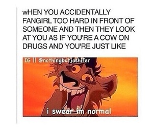 fangirl, funny, and lol image