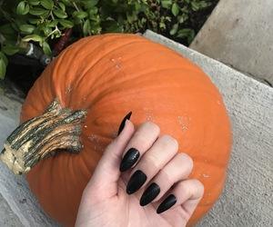 acrylic, black nails, and Halloween image