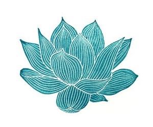 flower, lotus, and art image