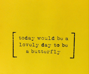 yellow, aesthetic, and butterfly image