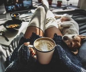 dog, coffee, and winter image