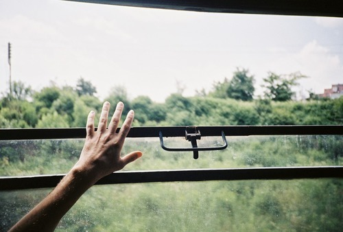 hand, nature, and vintage image