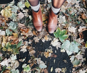 autumn, life, and shoes image