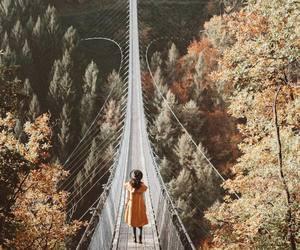 autumn, bridge, and colors image