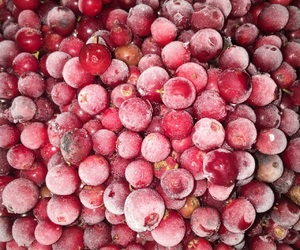 berries, cold, and cranberry image