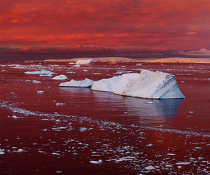 antarctica, arctic, and climate change image