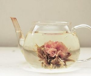 flower, tea, and girly image