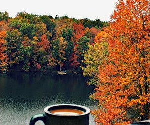 autumn, cozy, and warm image