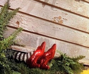 Wizard of oz, ruby slippers, and The wizard of OZ image