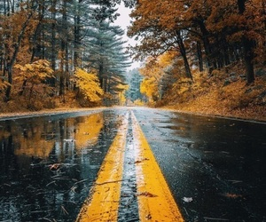 autumn, rain, and wallpaper image