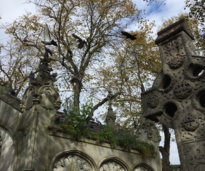 autumn, cemetery, and gothic image