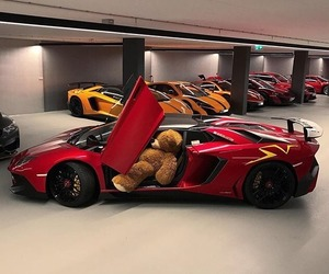 car, red, and bear image