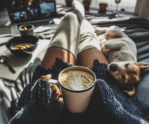 dog, coffee, and winter image