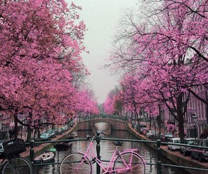 arbre, world, and pink image