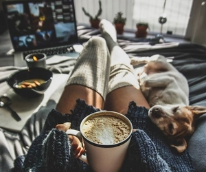 dog, coffee, and cozy image