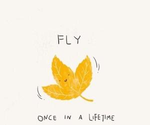 autumn, leaf, and fall image