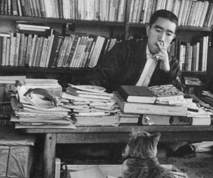books, cat, and writer image
