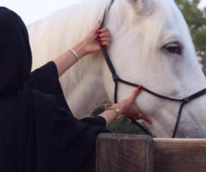 allah, girl, and hijab image