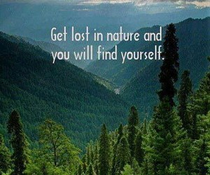 nature, funny, and quotes image