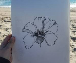 beach, drawing, and flower image