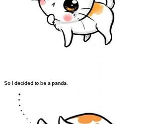 cat, panda, and funny image