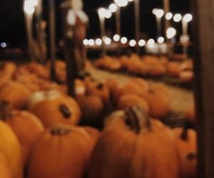 autumn, cuddle, and Halloween image