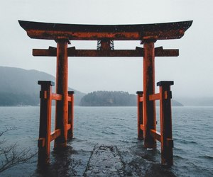 japan, sea, and photography image