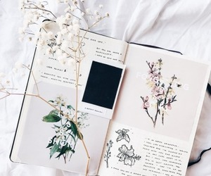 journal, article, and art image