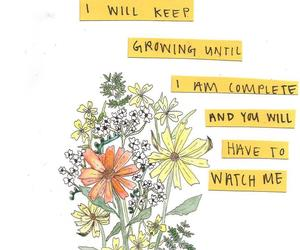 flowers, quotes, and words image