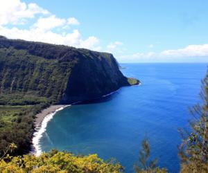 hawaii, tropics, and beach lovers image